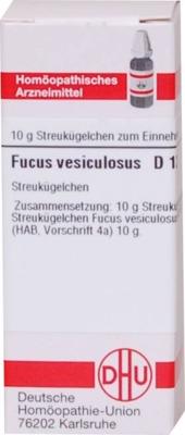 FUCUS VESICULOSUS D 12 Globuli