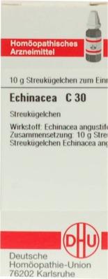 ECHINACEA HAB C 30 Globuli