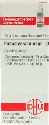 FUCUS VESICULOSUS D 1 Globuli