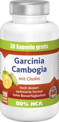 Vorteile der Einnahme von Garcinia Cambogia