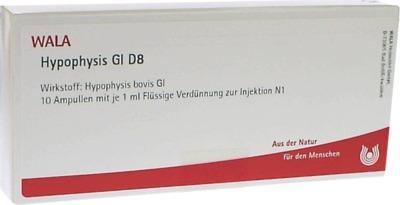 HYPOPHYSIS GL D 8 Ampullen