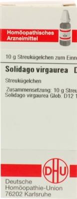 SOLIDAGO VIRGAUREA D 12 Globuli