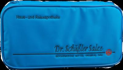 BIOCHEMISCHE Haus- u.Reiseapotheke groß Dr.Schüßl.