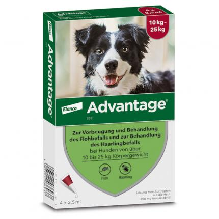 Advantage 250 Lösung für Hunde 10-25 kg