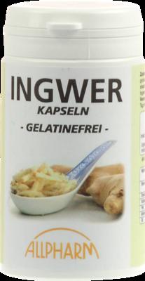 INGWER KAPSELN 300 mg