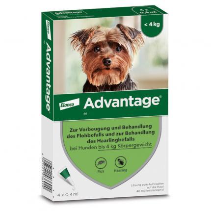 ADVANTAGE 40 Lösung für Hunde bis 4 kg