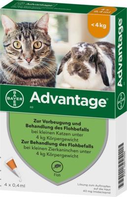 Advantage 40 mg für kleine Katzen und kleine Zierkaninchen