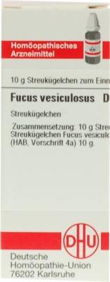 FUCUS VESICULOSUS D 2 Globuli