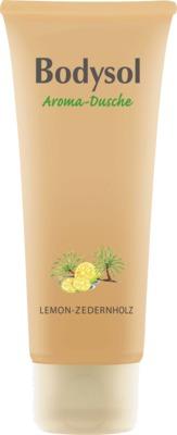 BODYSOL Aroma Duschgel Lemon Zedernholz