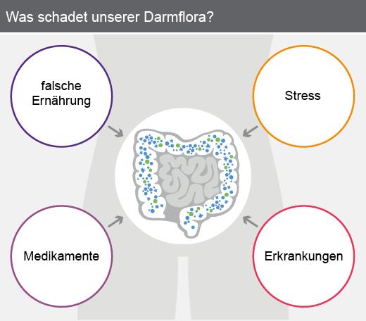 Was schadet unserer Darmflora?